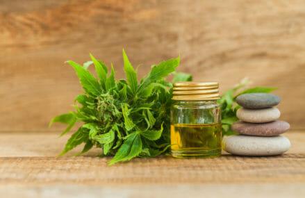 Does CBD Oil Treat Back Pain?