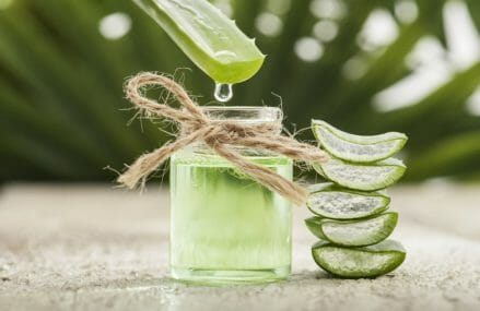 The Important Benefits of Aloe Vera!