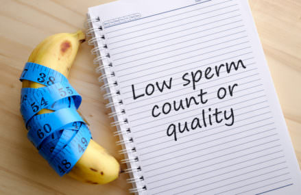 Sperm Count of Western Men Decline