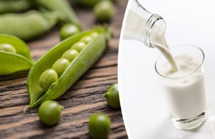 5 Reasons I Drink Pea Milk Every Day Instead Of Dairy