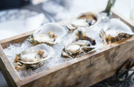 Why We Should Eat Oysters