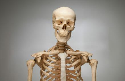 Tips for Building Healthy Bones